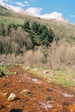 Glade mineral spring. Glade mineral spring in Balkaria,Prielbruse,Caucasus,Russia Royalty Free Stock Photography