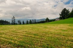 Glade in mountains in cloudy day Royalty Free Stock Images