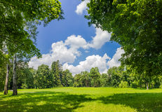 Glade in the park. Large clearing in the park among the conifers and deciduous trees on the background of the sky with clouds Royalty Free Stock Images