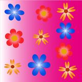 Glade of varicoloured colors blue yellow and red. On a pink background, a floral background is illustration Royalty Free Stock Image