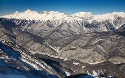Glade vermelho, Sochi Fotografia de Stock Royalty Free