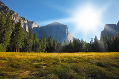 The glade in Yosemite park on a Sunrise Royalty Free Stock Photography