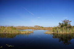 Glades Lake. Small lake in the Everglades, Big Cypress Stock Photography