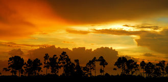 Glades Sunset Royalty Free Stock Photography