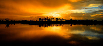 Glades Sunset. Sunset at the Pine Glades Natural Area in south eastern Florida Stock Images