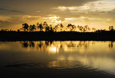 Glades Sunset. Sunset at the Pine Glades Natural Area in south eastern Florida Stock Photo