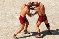 Gladiadores Fotos de Stock