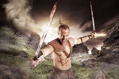 Gladiator in a battle Stock Photography