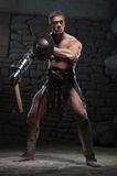 Gladiator with shield and axe Royalty Free Stock Image