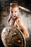 Gladiator Royalty Free Stock Image