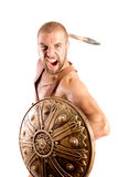 Gladiator Royalty Free Stock Photos