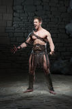Gladiator with sword posing Stock Images