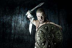 Gladiator warrior Stock Photography