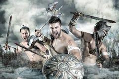 Gladiatorer/krigare arkivfoton