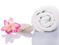 Gladiola, Towel and Pumice Rock Royalty Free Stock Image