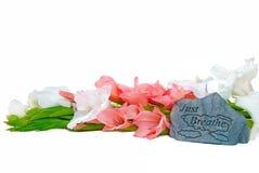 Gladiolas con una roca Imagen de archivo libre de regalías
