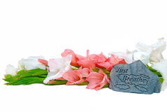 Gladiolas with a rock. Inspirational sign engraved on a rock with gladiolas royalty free stock image
