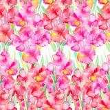 gladiolus желтый цвет картины сердца цветков падения бабочки флористический Стоковое Фото