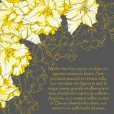 gladiolus royalty-vrije illustratie