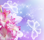Gladiolus blossom and butterflies Stock Image