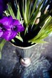 Gladiolus Kwitnie w chrom wazie fotografia stock