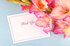 Gladiolus Thank You. Royalty Free Stock Image