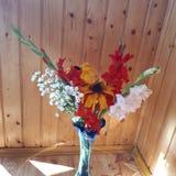 gladiolus vase tageslicht Herbst lizenzfreie stockbilder