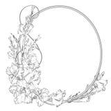 Gladiolusa kwiat Roczników eleganccy kwiaty Czarny i biały wektorowa ilustracja botanika wektor Obrazy Royalty Free