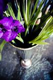 Gladiolusen blommar i kromvas Arkivbild