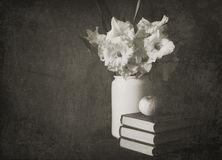 Gladioluses in a white jug with books and apple. The black and white made old photo Stock Images
