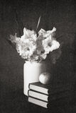 Gladioluses in a white jug with books and apple. The black and white made old photo Stock Photography