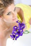 Gladioulus flowers Stock Image