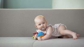Gladlynt behandla som ett barn flickan som spelar med färgrika leksaker på soffan, spädbarnet som lär att krypa lager videofilmer