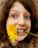 gladlynt flickayellow för camomile Royaltyfri Bild