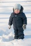 gladlynt gå vintern royaltyfri fotografi