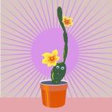 Gladlynt kaktus Royaltyfria Bilder