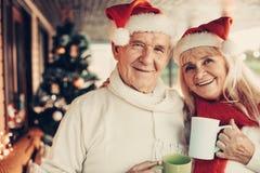 Gladlynt kasta en blick äldre par som tillsammans firar jul royaltyfria foton