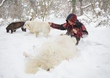 Gladlynt kvinna som spelar med hundkapplöpning i snön royaltyfri bild