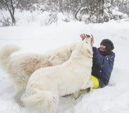Gladlynt kvinna som spelar med vit hundkapplöpning i snön royaltyfria bilder