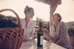 Gladlynt kvinnlig som två dricker vin royaltyfria foton