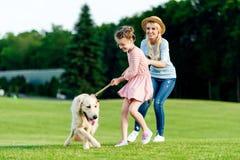 gladlynt moder och dotter som spelar med golden retrieverhunden på grönt gräs royaltyfria foton