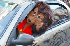 Gladlynt nallebjörn som kör en bil Arkivbilder