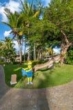 Gladlynt pekareväg till stranden på en bakgrund av palmträd Royaltyfri Bild