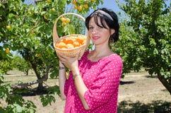 Gladlynta brunettplockningfrukter arkivfoton