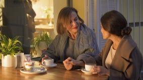Gladlynta kvinnliga vänner som sitter i kafé och att prata och att ha angenäm tid tillsammans stock video