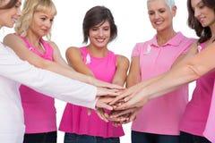 Gladlynta kvinnor som poserar i cirkelinnehav, räcker bärande rosa färger för b Royaltyfria Foton