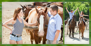 Gladlynta älska par går på med bruna hästar Arkivbild