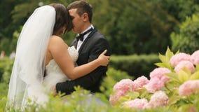 Gladlynta nygifta personer som omfamnar, i grön sommar, parkerar med rosa blommor Den stiliga brudgummen omfamnar ömt hans älskvä lager videofilmer