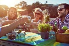 Gladlynta vänner som dricker coctailar Arkivbild