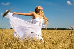 Gladness. Photo of glad girl with white fabric looking upwards in wheat meadow royalty free stock images